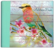 ADDRESS BOOK,Dawn Chorus