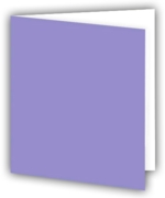 GIFT TAGS,Plain Lilac Pastel 12's