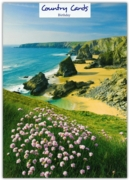 GREETING CARDS,Birthday 6's Bedruthan Steps