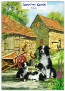GREETING CARDS,Birthday 6's Border Collies on the Farm