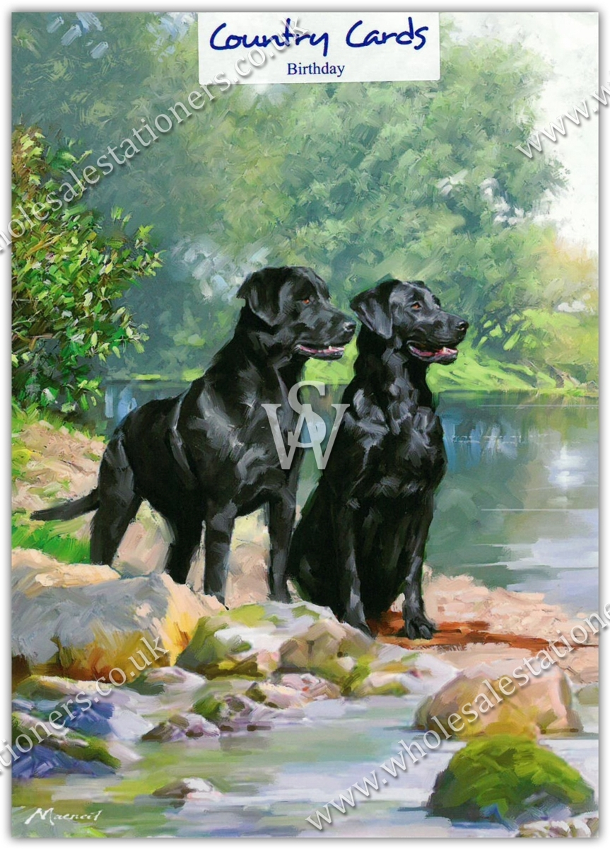 GREETING CARDSBirthday 6s Black Labradors By The River