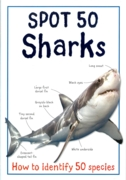 EDUCATIONAL BOOK,Spot 50 Sharks