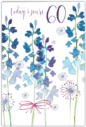 GREETING CARDS,Age 60 Female 6's Bluebells