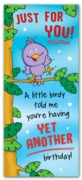 GREETING CARDS,Birthday 6's A Little Birdy