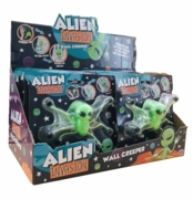 ALIEN WALL CREEPER,H/pk