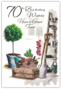 GREETING CARDS,Age 70 Male 6's Garden Shed